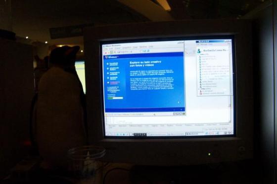 Windows bajo linux